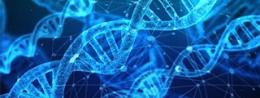 GRANTY EUROPEJSKIEJ RADY ds. BADAŃ NAUKOWYCH szansą dla wybitnych naukowców