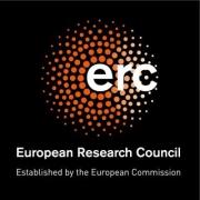 Warsztaty ERC Mentoring Initiative